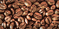 Декор керамический Absolut Keramika Monocolor Decor Coffee Beans 01 10х20
