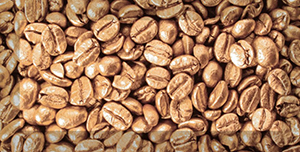 Декор керамический Absolut Keramika Monocolor Decor Coffee Beans 03 10х20